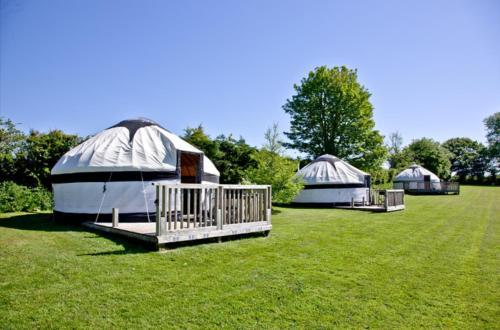 Cornish Yurt With Hot Tub (1)