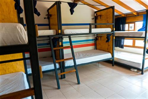 Single Bed in Deluxe 8-Bed Dormitory Room