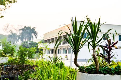 Chiangdaoplace Chiang Dao