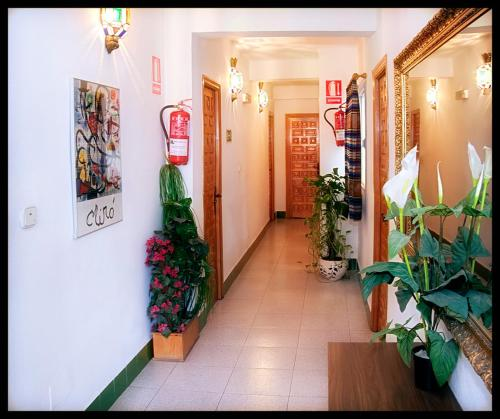Foto - Hostal Estación