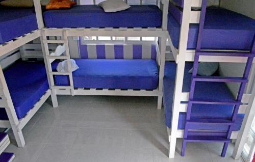 Single Bed in Mixed 12-Bed Dormitory Room