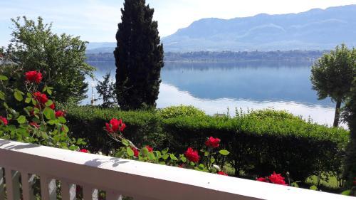 VILLA STERIANE - Accommodation - Le Bourget-du-Lac
