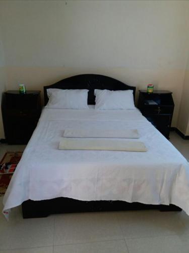 Hotel Delina, Mehakelegnaw