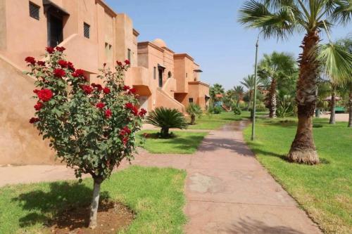 صور غرفة Appartement de luxe à Atlas Golf Resort 3019 - [#117130]