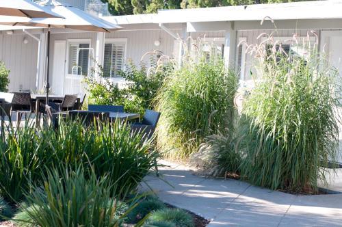 1006 Washington Street, Calistoga, California 94515, United States.