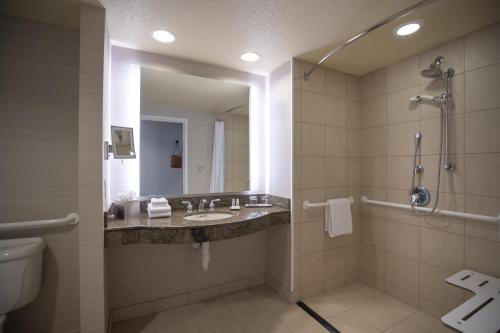 Junior Suite, Club lounge access, 1 Bedroom Larger Suite