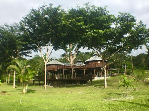 The Treehouse Cayo