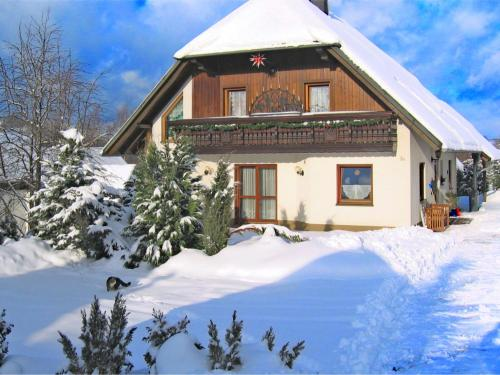 . Beautiful Apartment in Pohla Saxony near Ski Area