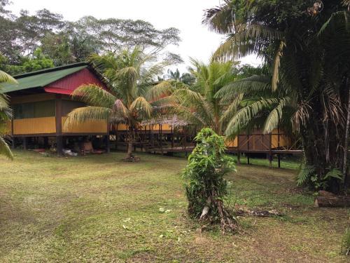 . Amazon Wonder Expeditions