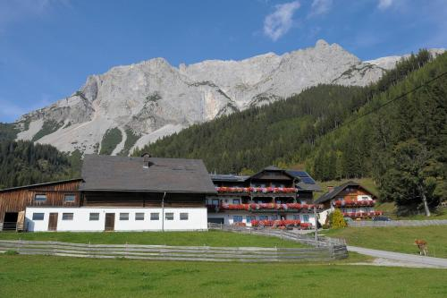 Feichtlehnerhof Ramsau am Dachstein