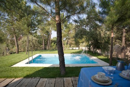 Suite con piscina privada - Uso individual Hotel Boutique Pinar 73