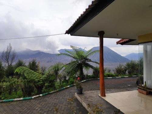 Guesthouse Gunung Bromo