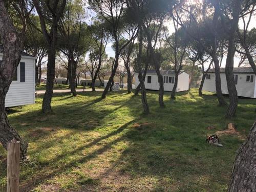 . Camping Freixa