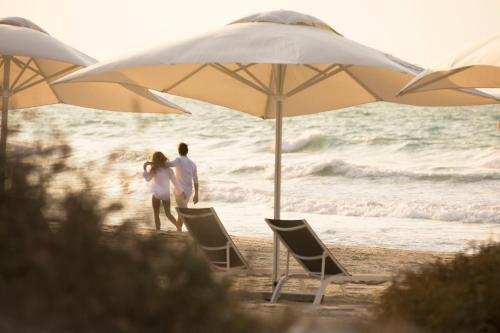 Saadiyat Island East, Saadiyat Island, Abu Dhabi, United Arab Emirates.