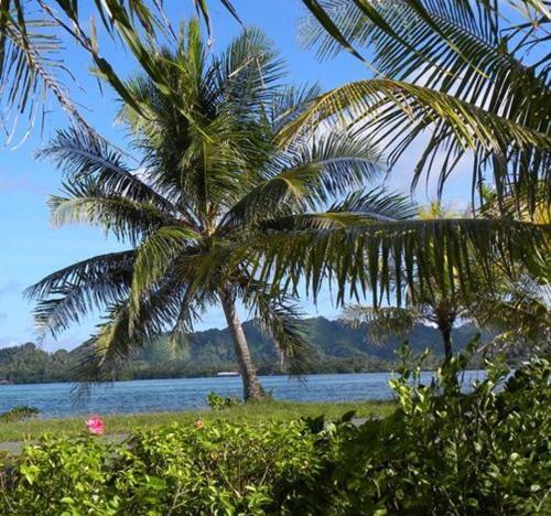 . Pacific Treelodge Resort