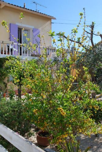 le pitchounet - Location saisonnière - Arles