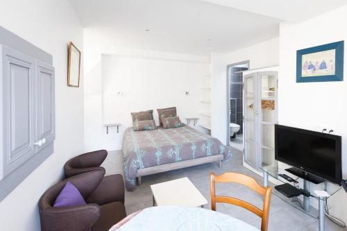 Studio Le Nid du Saleys - Apartment - Salies-de-Béarn