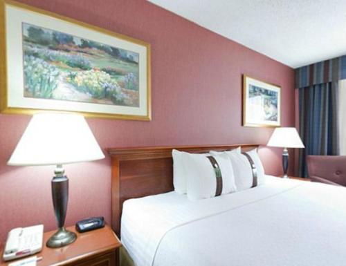 Holiday Inn Hinton - Hinton, AB T7V 1N1