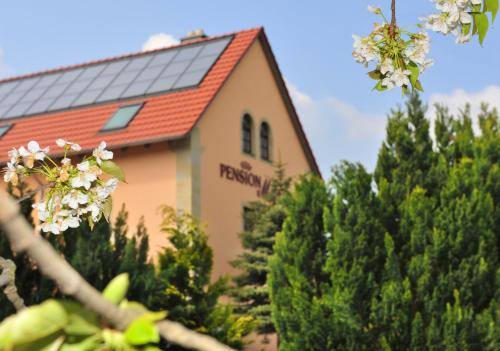 Pension Marlis - Hotel - Reichenberg
