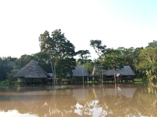 Фото отеля Amazon Dreams Eco Tours