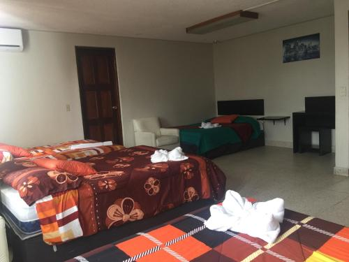 G y V Hotels room photos