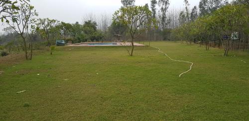Basi Woods, Bulandshahr