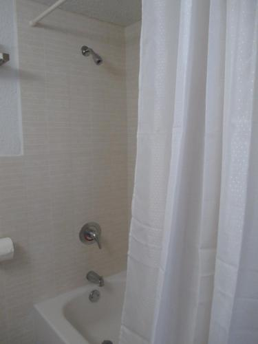 Shalimar Motel - Miami, FL 33138