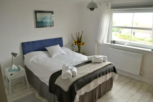 Bright Sunny Room With Lovely View, Marazion, Cornwall