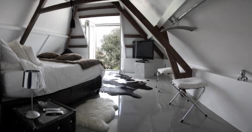 . Paradise suite