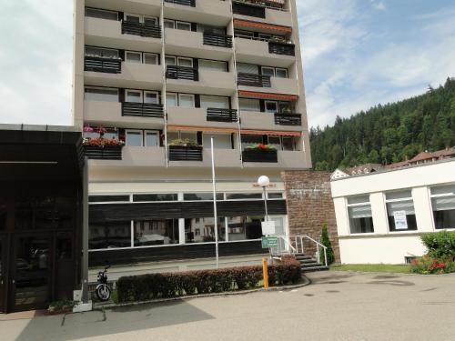 Alb Studio - Apartment - St. Blasien