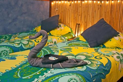 Bed & Breakfast Barrio photo 27