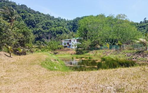 . Mangrove Tilapia Farm