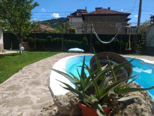 Къща за гости с минерална вода Терма Асклепий - Hotel - Kyustendil