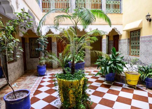 . Hôtel Faouzi
