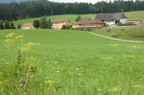 Ferienhaus Wohleser - Hotel - Mariahof