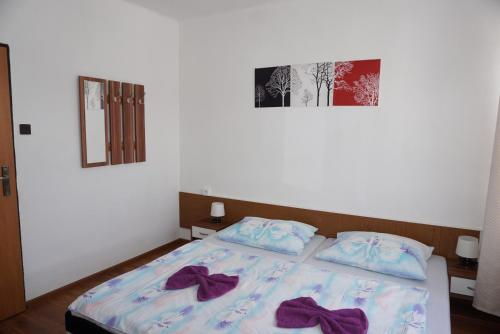 Standardna soba z enojnima posteljama in s skupno kopalnico (Standard Twin Room with Shared Bathroom)