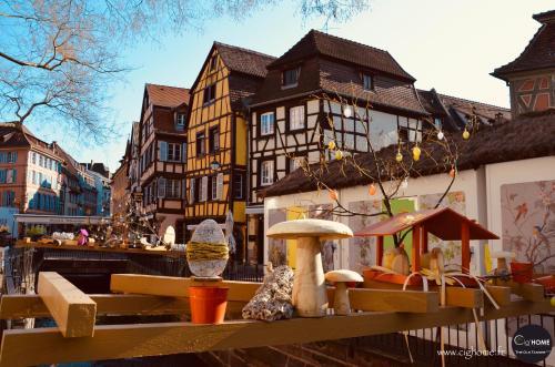 Cig'HOME - The Old Tanner *** - Location saisonnière - Colmar