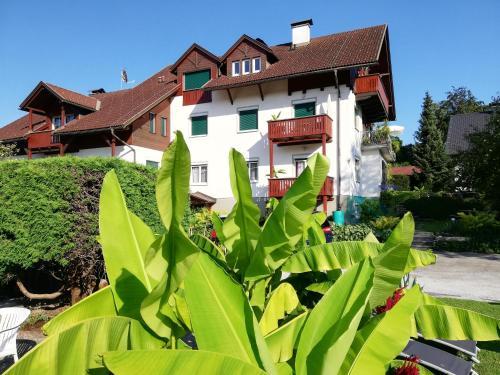 . Haus Friedburg