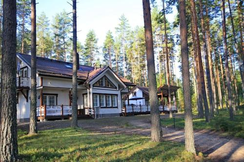 Big House in a Pine Forest - Accommodation - Savonlinna
