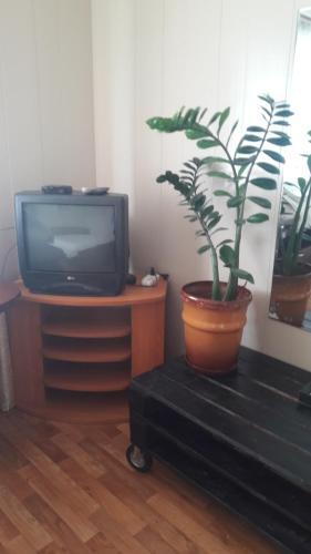 Гостевои Дом у Ирины, Anivskiy rayon