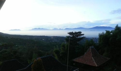 Mountain Wooden Villa, Bandung