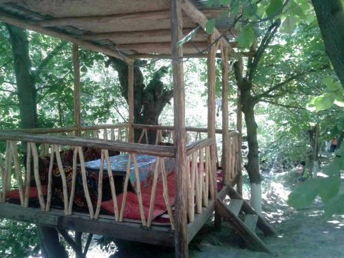Guest House Mutabar, Nurota