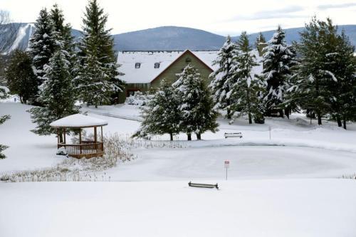 Black Bear Inns By Canaan Valley Rentals