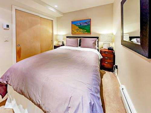 322 Park Avenue Duplex Duplex - Apartment - Aspen