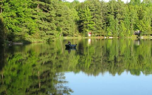 Turtle Cove on Town Lake Cabin, Alger