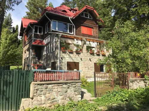 Apartamentul Ursilor - Apartment - Predeal