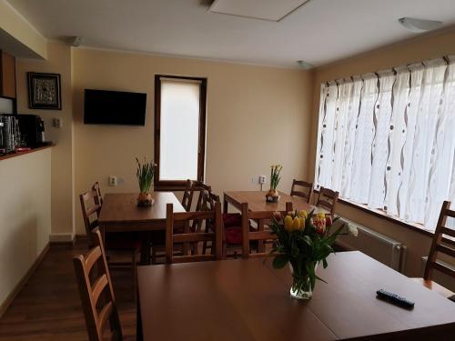 Casa Munte Busteni - Accommodation