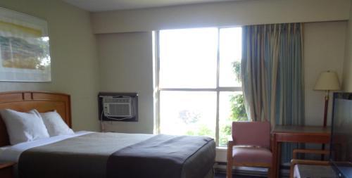 Hospitality Inn - image 13