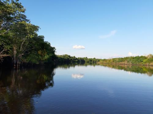 . lupuna jungle tours and expeditions