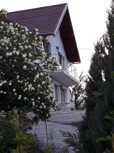 . Vila Hubertus